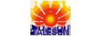 talesun logo